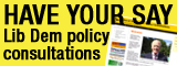 Lib Dems Policy Consultation image